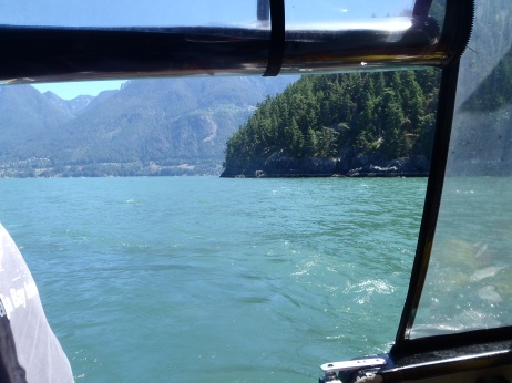 View from the back of the boat.