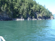 Crazy Crabs dive site - Bowyer Island