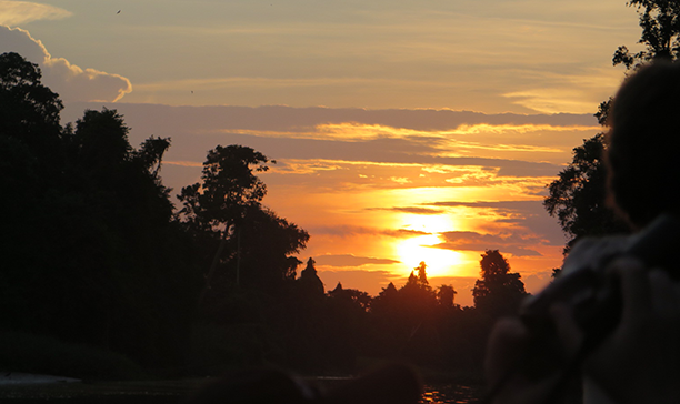 Sundown in the jungle. Kinabatangan River.