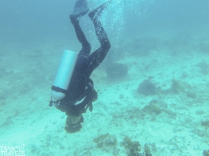 Trainees had their fun and endangered the live of other divers.